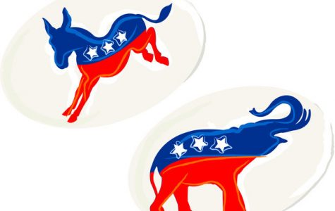 All You Need to Know About the Primary Election
